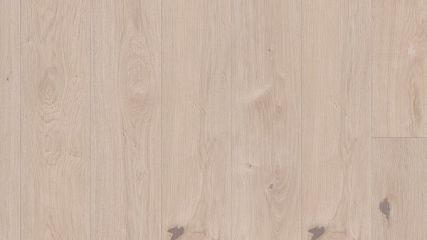Langdiele Eiche Savanne lebhaft bunt (spektrum) gefast reliefgehobelt PVf 2400x240