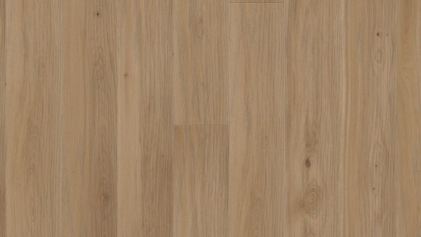 WP Charisma Einblatt Eiche Auster lebhaft (akzent) gefast gebürstet PV finish